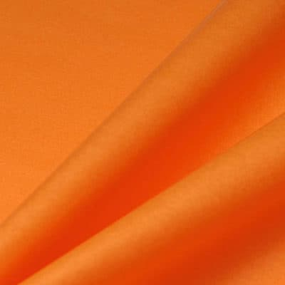 a29-mandarin[2]
